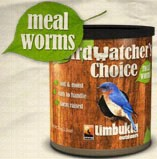 Birdwatcher's Choice Meal Worms